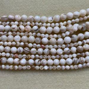 Shell Beads 5mm Cream